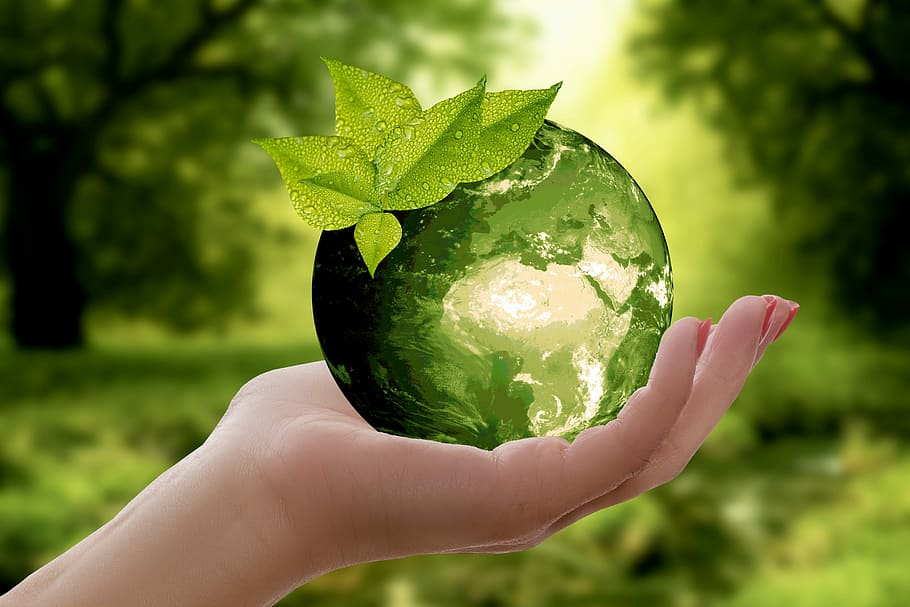3 Ways To Introduce Sustainability Into Your Warehouse